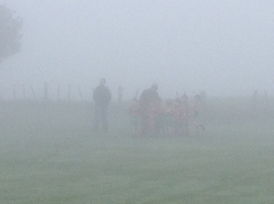 Apparently there is a group of small boys playing rugby in this photo!