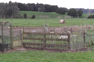 The new and improved chicken fence.