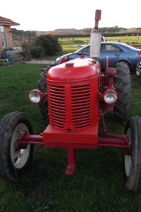Our new tractor - a 1952 David Brown. Hubby the Un-Gardener loves it. He says it makes him feel like a farmer. Although having a tractor without implements is like having a computer without software!!!