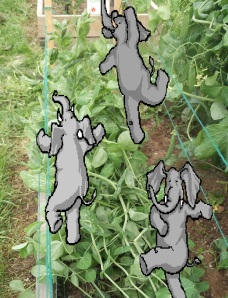 Don't let elephants dance on your peas - it just ruins them!