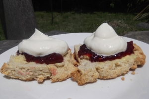 Nothing says summer better than warm scones, with fresh strawberry jam and a dollop of whipped cream!