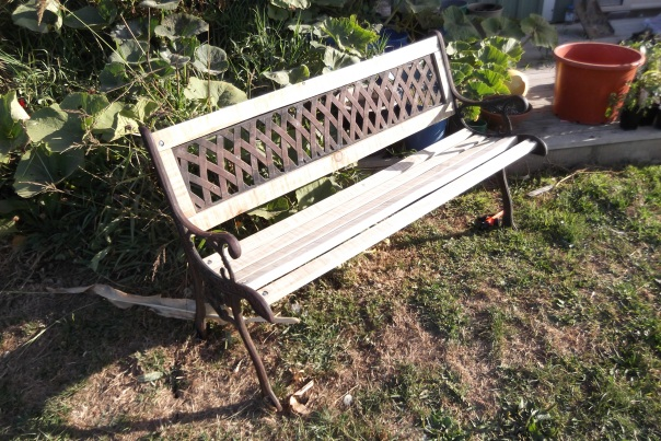 While waiting for my tomatoes I finished the job of replacing the wood on the rotten park bench that I started a couple of days ago.  Hubby the Un-Gardener helped drill the holes - but only so I wouldn't be seen to out do him as a handyman!