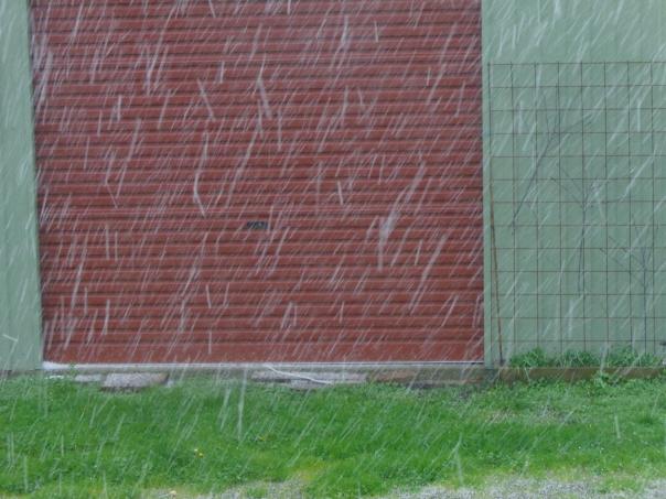 Hail hailing!