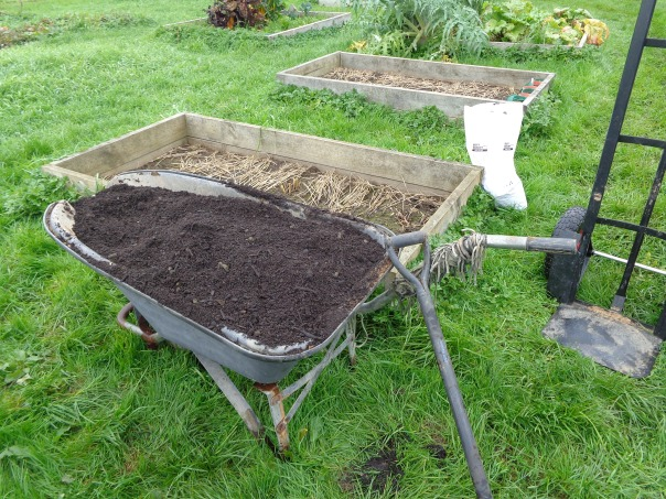 The wonky wheelbarrow makes a great mixing bowl!