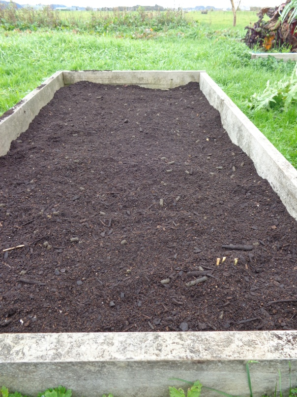 Under this soil is buried treasure!Under this soil is buried treasure!