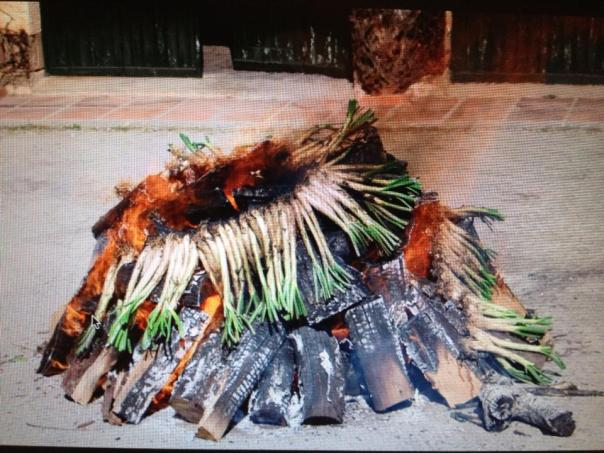 Roasting calcots in Catalonia, Spain.  Thanks to Brother the Chef for the photo!