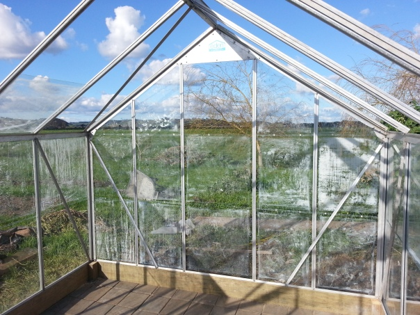 I don't think an open air glasshouse would work very well, beside I would never let such a thing a glass ceiling stand in my way so up it shall go!