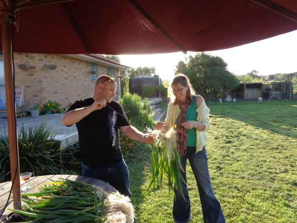 Stringing the spring onion onto the wire