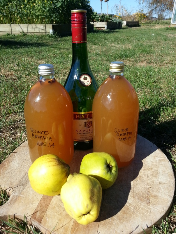 Ratafia of Quince, made in sunnier times (about three weeks ago!)