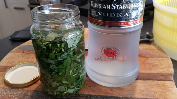 steep the stevia leaves in vodka
