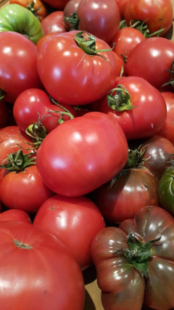 One tomato, two tomato, three tomato more