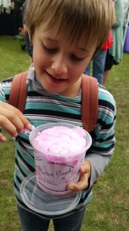 Taste Franklin Festival