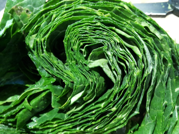 Ribbons of green goodness