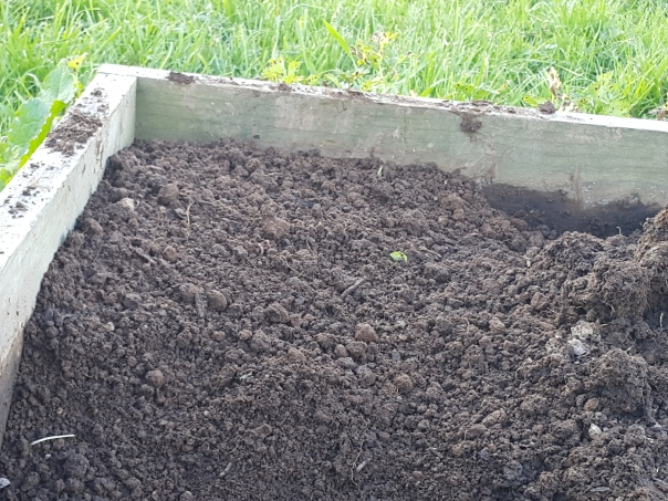 Ever so gently return the soil to the garden