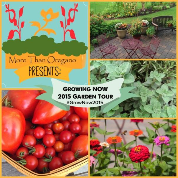 Grow Now Logo med