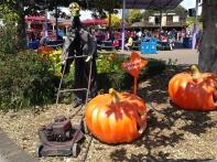 Halloween NZ style in NZ
