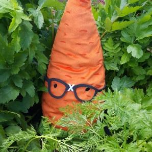 Gardenerd in the carrots