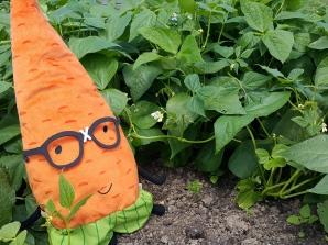 Gardenerd in the beans