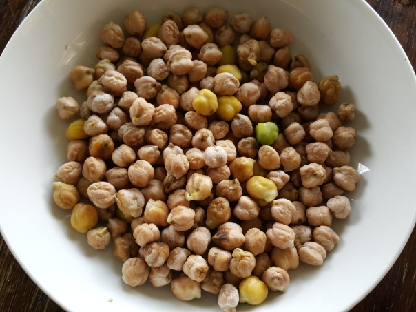 harvested chickpeas