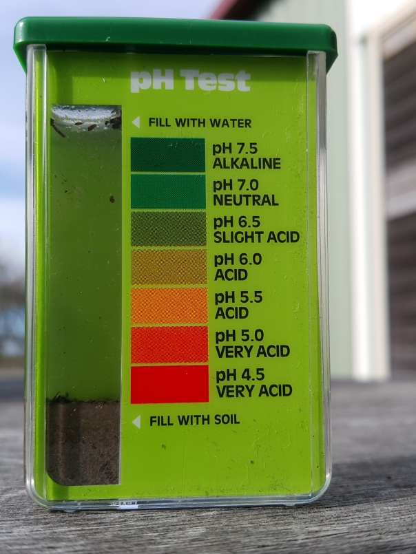 pH Soil Test