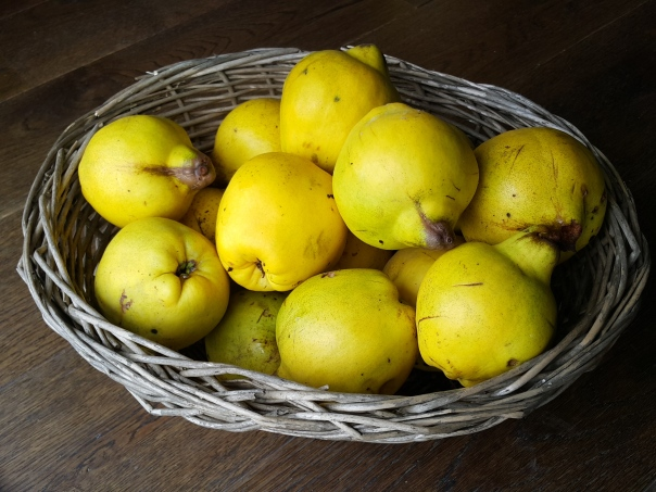 Quince are such a fragrant fruit