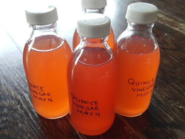 Quince vinegar - not only pretty but very delish!