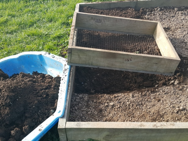 Sieving the soil