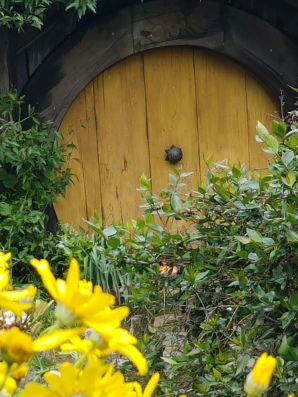 Brightly coloured flowers compete with brightly coloured doors