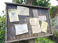 Stay informed with all the happenings around Hobbiton