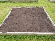bare earth raised bed