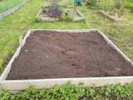 Brassica bed