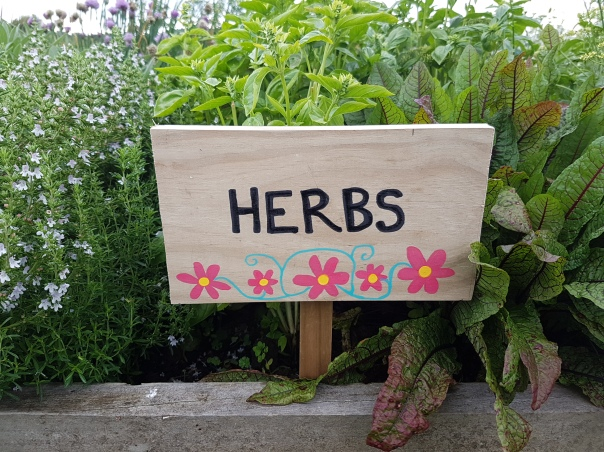 The herb garden is now tidy and befitting of its new sign