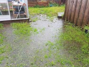 Floody floody