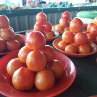 Tomatoes on display at the market