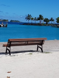 tropical park bench