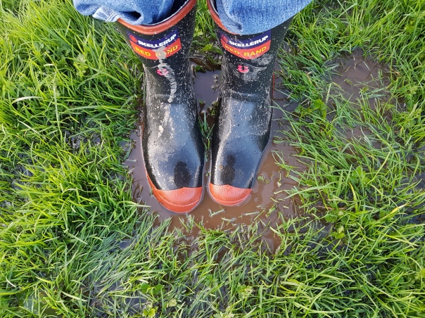 New gumboots in soggy puddles