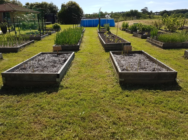 Nov: The garden was groomed within an inch of its life to prepare for sale.