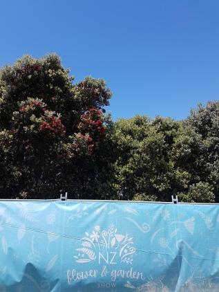 Blue sky summer day