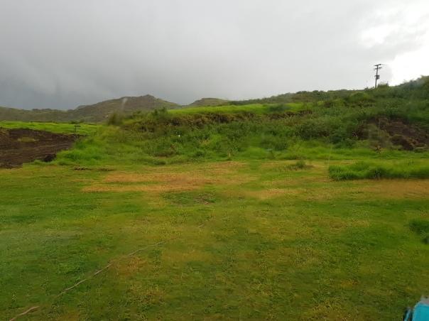 Rainy lawn