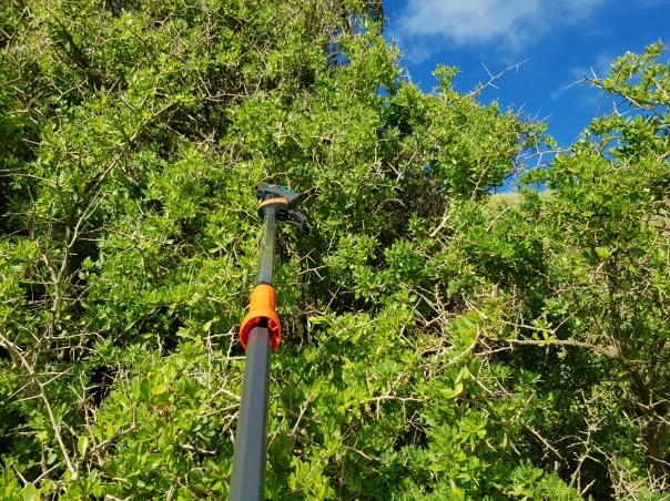 GARDENA Tree and Shrub Lopper StarCut 160 plus