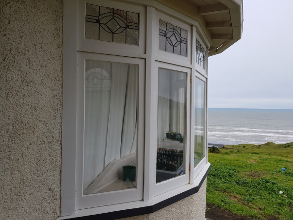 Seedlings in the bay window