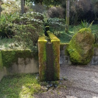 Cut and natural stone covered in moss