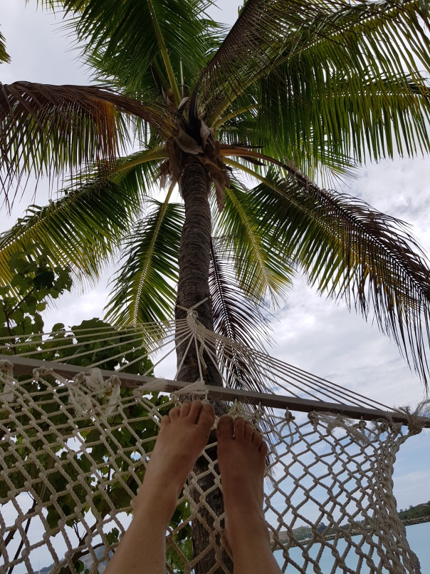 relaxing in a hammock