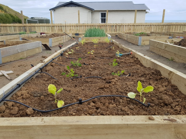 Planted bed