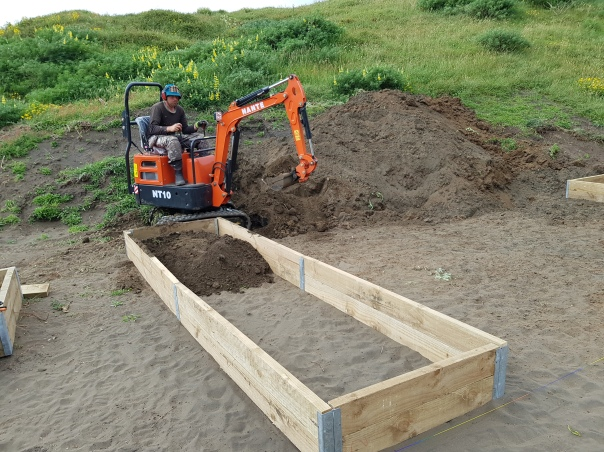 Filling beds with a mini digger