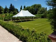 Mansfield Garden Hamilton Gardens