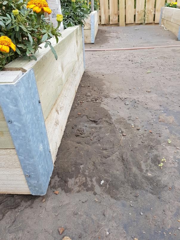 Watering garden beds