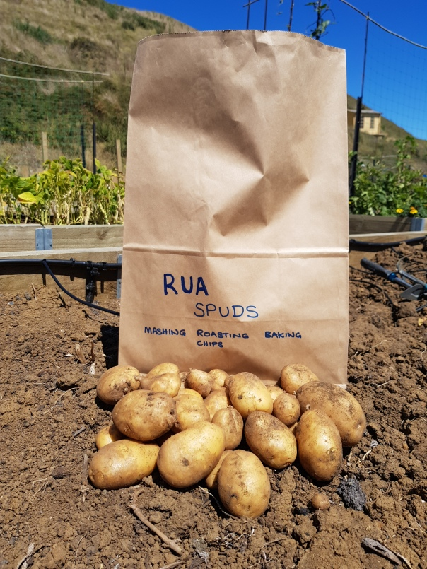 Potatoes in paper bags