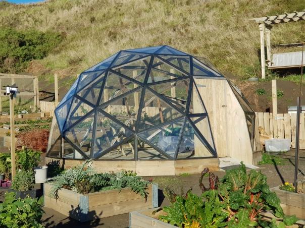 Glazed Geodesic Biodome