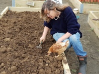 Beds were prepared for planting